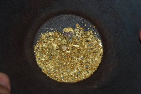 Gold in a pan